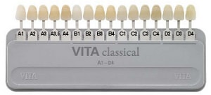 vita ceramic shade guide
