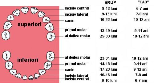 scurgere maronie sarcina trimestrul 3
